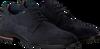 Blauwe TOMMY HILFIGER Nette schoenen SIGNATURE HILFIGER SHOE  - small