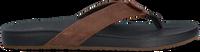 Bruine REEF Slippers CUSHION BOUNCE PHANTOM - medium