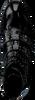 Zwarte ROBERTO D'ANGELO Enkellaarsjes 1800  - small