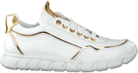 Witte JOCHIE & FREAKS Lage sneakers 20504  - medium