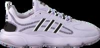 Paarse ADIDAS Lage sneakers HAIWEE C - medium