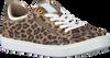 Witte BULLBOXER Sneakers AHM024ESC - small