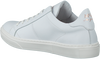 Witte MCGREGOR Sneakers TESS  - small