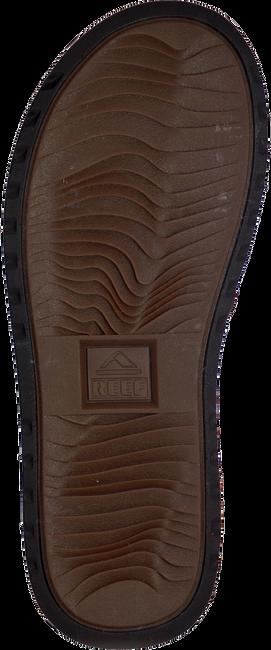 Bruine REEF Slippers REEF VOYAGE LE  - large
