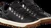 Zwarte POLO RALPH LAUREN Sneakers ADVENTURE  - small