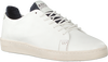 Witte REPLAY Sneakers WHARM - small