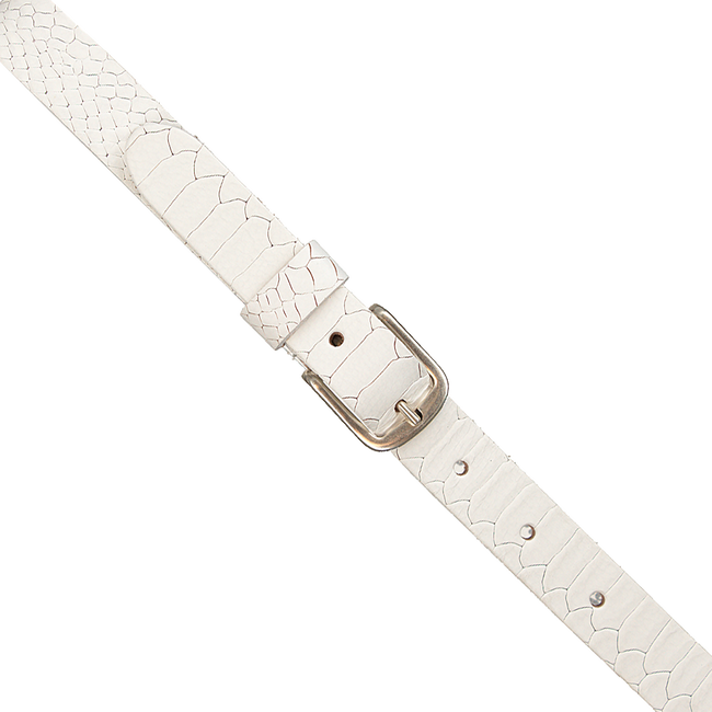 Witte PETROL Riem 25058 - large