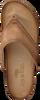 Cognac MJUS Slippers 463004 - small