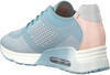 ASH SNEAKERS LUCKY - small