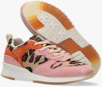 Roze SCOTCH & SODA Lage sneakers VIVI - medium