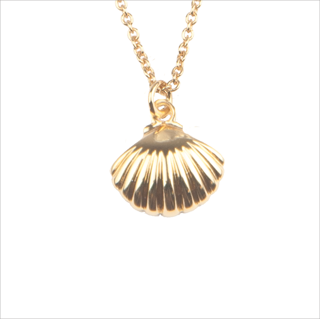 Gouden ATLITW STUDIO Ketting SOUVENIR NECKLACE SEA SHELL - large