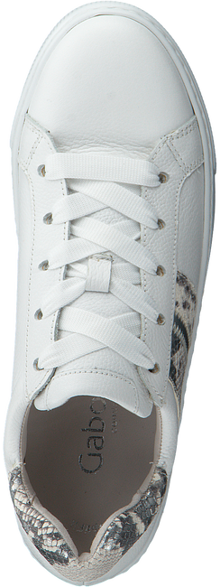 Witte GABOR Lage sneakers 495  - large