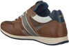 Cognac MCGREGOR Sneakers JAIRISON  - small