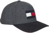 Grijze TOMMY HILFIGER Pet BIG FLAG CAP  - small