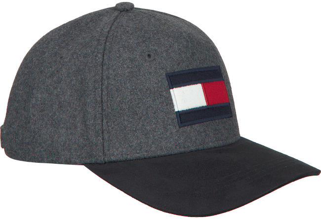Grijze TOMMY HILFIGER Pet BIG FLAG CAP  - large