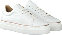 Witte ROBERTO D'ANGELO Lage sneakers FERMO  - medium