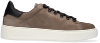 Taupe WOOLRICH Lage sneakers CLASSIC COURT HIKING  - medium