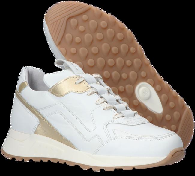 Witte PIEDI NUDI Sneakers 2507-02  - large