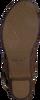 Bruine CA'SHOTT Sandalen 17091  - small