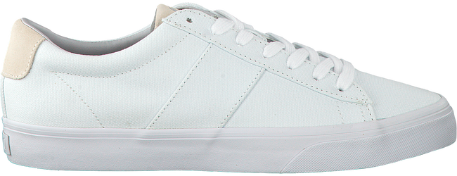 POLO RALPH LAUREN SNEAKERS SAYER - large