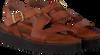 Cognac RED RAG Sandalen 79134 - small