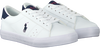 Witte POLO RALPH LAUREN Lage sneakers THERON  - small