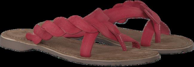 Rode LAZAMANI Slippers 75.283  - large