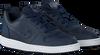 Blauwe NIKE Sneakers COURT BOROUGH LOW (KIDS)  - small