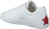 Witte ASH Sneakers NAK  - small
