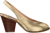 Gouden ROBERTO D'ANGELO Pumps GENOVA  - medium