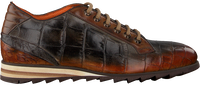 Cognac HARRIS Lage sneakers CARDIFF - medium