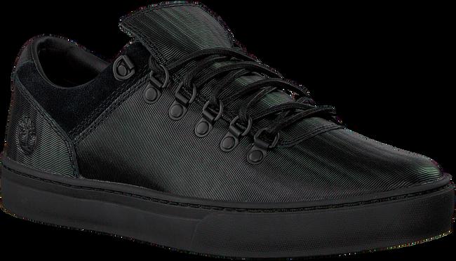 Zwarte TIMBERLAND Sneakers ADV 2.0 CUPSOLE ALPINE OX  - large