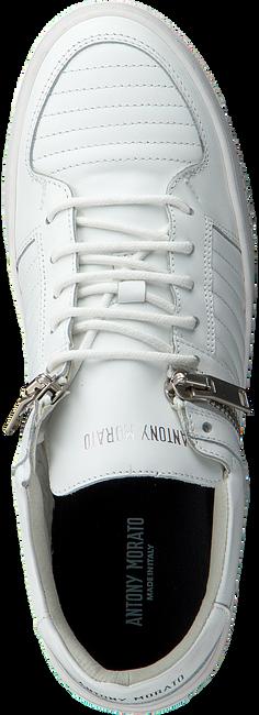 Witte ANTONY MORATO Sneakers MMFW00907 ANTONY MORATO - large