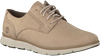 Beige TIMBERLAND Sneakers FRANKLIN PARK BROGUE OX  - small