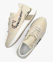 Beige CRUYFF CLASSICS Lage sneakers PARKRUNNER  - medium