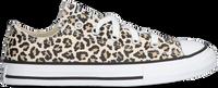Beige CONVERSE Sneakers CHUCK TAYLOR ALL STAR OX KIDS  - medium