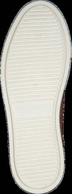 Cognac VAN LIER Sneakers 1919400  - large