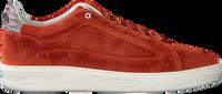 Rode FLORIS VAN BOMMEL Lage sneakers 13265  - medium