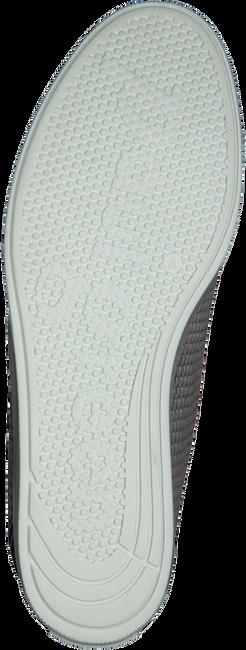Grijze PAUL GREEN Sneakers 4449  - large