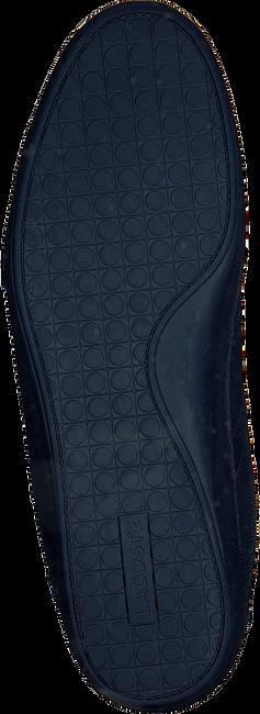 Blauwe LACOSTE Sneakers CHAYMON  - large