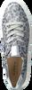 Grijze HASSIA Sneakers BILBAO  - small