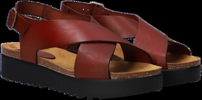 Cognac RED-RAG Sandalen 78068  - large
