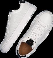 Witte BLACKSTONE Lage sneakers RM48  - medium