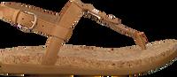 Camel UGG Sandalen ALEIGH - medium