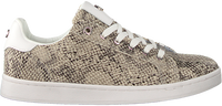 Taupe MEXX Lage sneakers EEKE  - medium