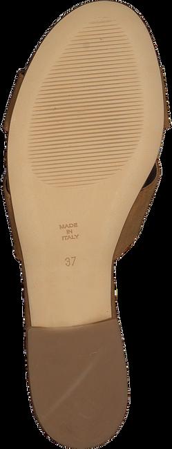 Cognac NOTRE-V Slippers 2213  - large