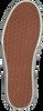 Zwarte VANS Sneakers AUTHENTIC PLATFORM 2.0 AUTHENT  - small