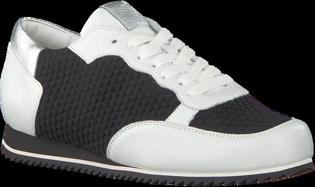 Zwarte HASSIA Sneakers 1624 - large