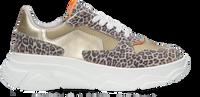 Beige OMODA Lage sneakers O1266-212  - medium