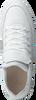 Witte NUBIKK Sneakers JULIEN MIELE LIZARD II  - small